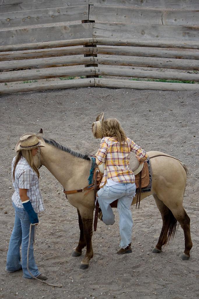 Horse Round Pen 17 Rockin 39 R Ranch