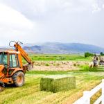 Tractors at the Rockin R