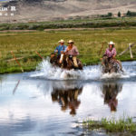 Cowboys riding through water on their horses